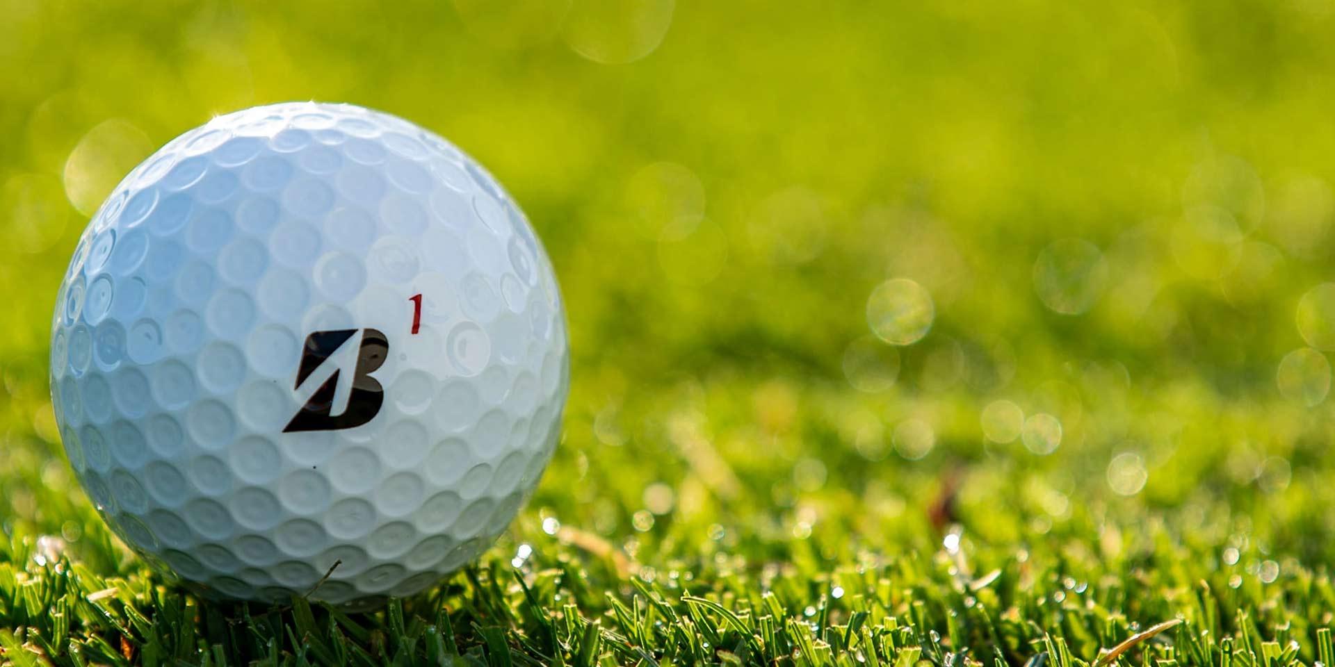 Premium Golf balls versus Budget balls?